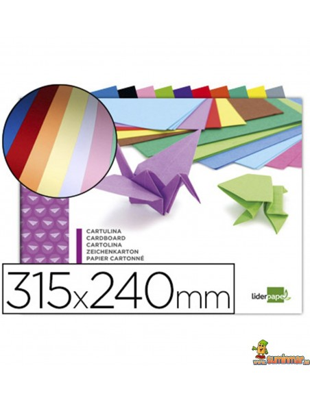 Bloc de cartulinas 315x240mm 10 hojas